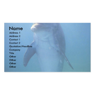Baby dolphin, La Havana Aquarium, Cuba Business Card