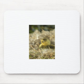 Baby Duck Mouse Mat