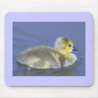 Baby Duck Mousemat