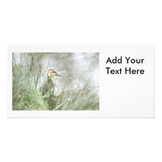 Baby duck personalised photo card