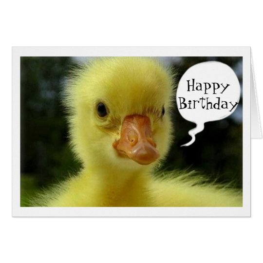 BABY DUCK SAYS HOPE YOUR BIRTHDAY IS JUST