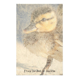 Baby Duckling Birds Faux Handmade Paper Stationery