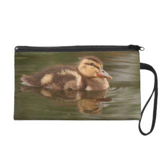 Baby Duckling Duck Bird Wildlife Animals Bag Wristlets
