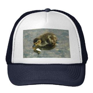 Baby Duckling Hat