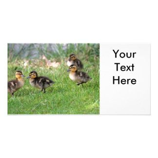 Baby Ducks Photo Photo Card Template