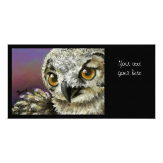 Baby eagle owl picture card