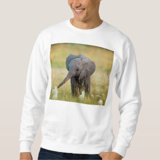 Baby Elephant and Birds Sweatshirt