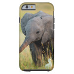 Baby Elephant and Birds Tough iPhone 6 Case
