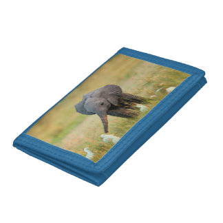 Baby Elephant and Birds Trifold Wallet