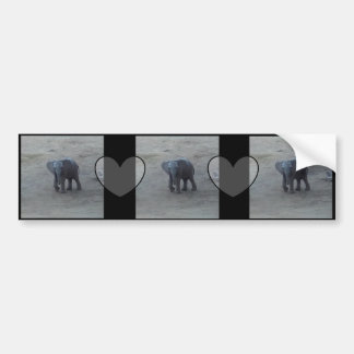 Baby Elephant & Hearts Bumper Sticker