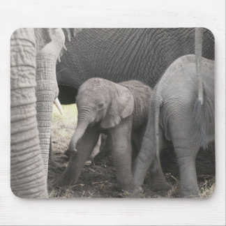 Baby elephant is standing and wobbly mouse mat