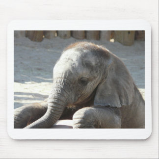 baby elephant mouse mat