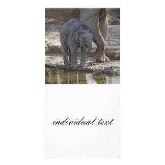 baby elephant personalized photo card