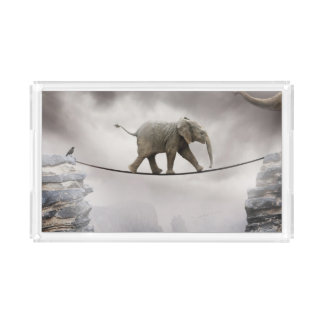 Baby elephant walks tightrope across big gorge. acrylic tray