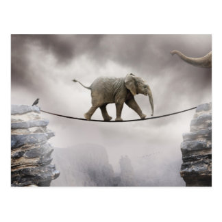 Baby elephant walks tightrope across big gorge. postcard