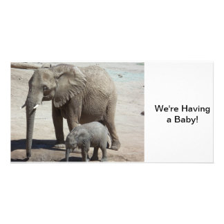 Baby Elephant with Mommy Photo Greeting Card