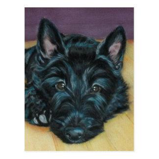 'Baby Em' - Scottie puppy Postcard