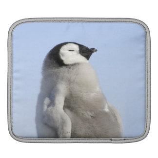 Baby Emperor Penguin, Snow Hill Island iPad Sleeve