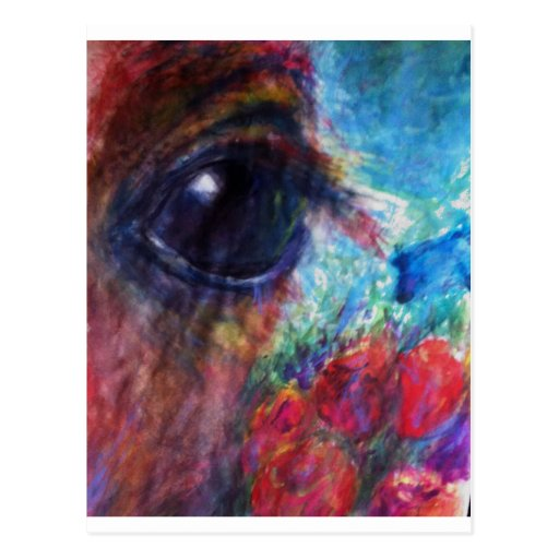 Baby Eye Foal of Life Postcard