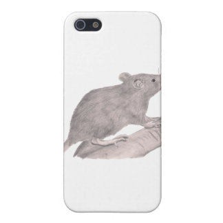 Baby Fancy Rat Covers For iPhone 5