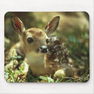 Baby Fawn Mouse Pad