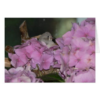 Baby Finch with Hydrangias Greeting Card