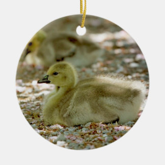 Baby Geese on a Bed of Roses Christmas Ornament
