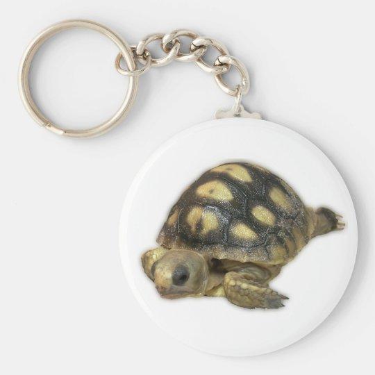 Baby Ghopher Tortoise Key Ring