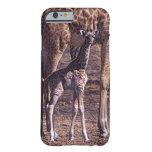 Baby giraffe and mother, Tanzania Barely There iPhone 6 Case