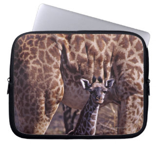 Baby giraffe and mother, Tanzania Laptop Sleeve