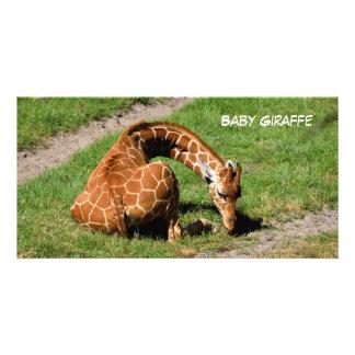 Baby Giraffe At Wildlife Reserve Customized Photo Card