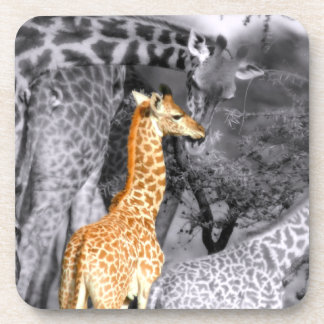 Baby Giraffe Coaster