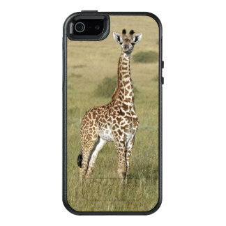 Baby Giraffe In Nairobi OtterBox iPhone 5/5s/SE Case