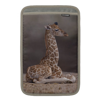 Baby Giraffe MacBook Air Sleeve