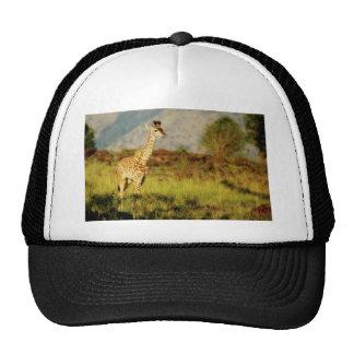 Baby Giraffe wildlife hats
