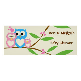 Baby Girl Owl Baby Shower Banner Poster