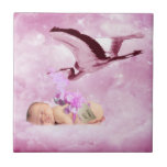 Baby girl pink clouds and stork