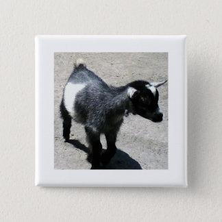 Baby Goat 15 Cm Square Badge