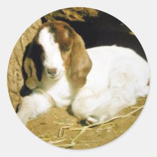 Baby Goat Classic Round Sticker