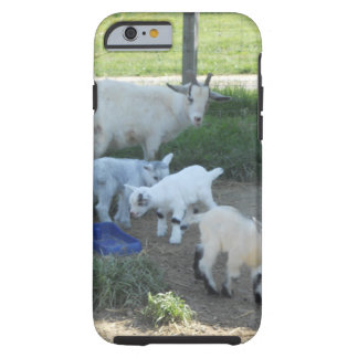 Baby Goat Family Tough iPhone 6 Case