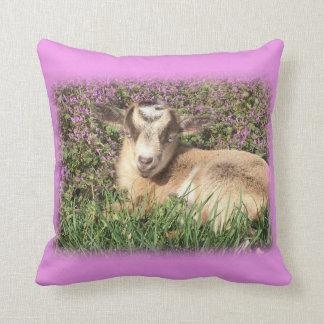 Baby Goat Kid Barnyard Farm Animal Pink Cushion