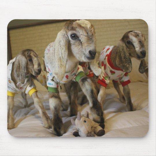 Baby Goat PJ Party Mousepad