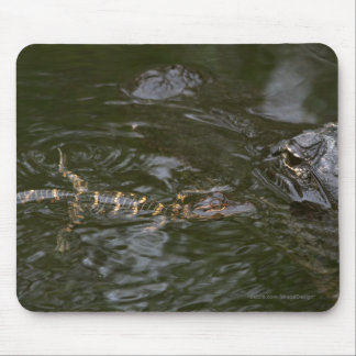 Baby Goes for a Swim Mouse Pad