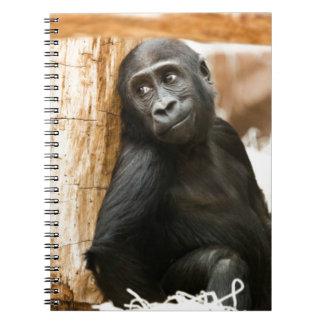 Baby gorilla spiral notebook