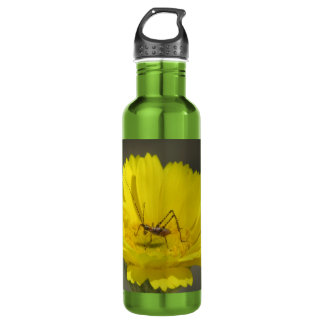 Baby Grasshopper 710 Ml Water Bottle