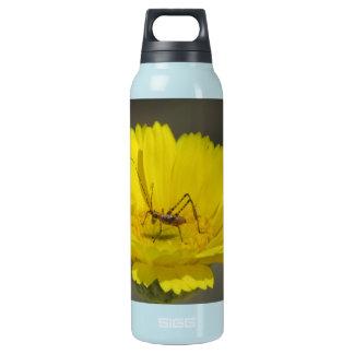Baby Grasshopper Insulated Water Bottle