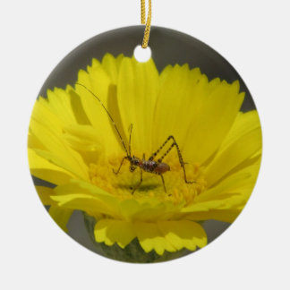 Baby Grasshopper Round Ceramic Decoration