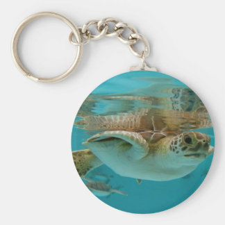 Baby Green Sea Turtle Key Ring