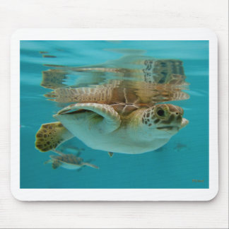 Baby Green Sea Turtle Mouse Mat