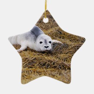 Baby Harbor Seal Ornaments